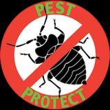 Foto de Evolution Pest and Hygiene Services cc.