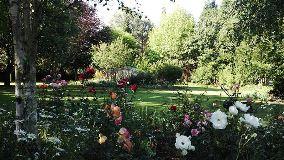 Foto de Treelands Estate Dullstroom