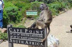 Foto de Way 2 Go Shuttle Service and Tours Cape Town